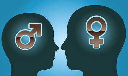 初學者的大腦性別差異指南