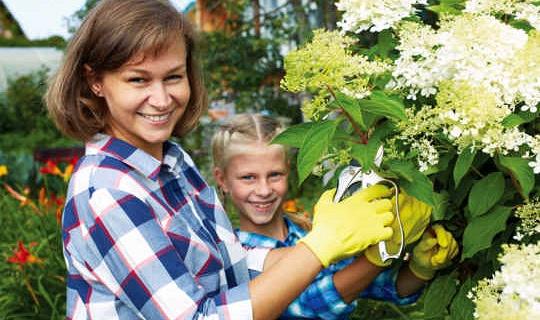 Hur håller vi på trädgårdsarbete inför ett klimatförändring?