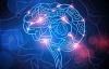 Mappatura del cervello: gli scienziati definiscono le regioni distinte 180, ma quale ora?