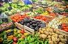 EU är strikt på GM-grödor, men är det logiskt?