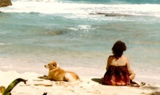 الكلاب تعرف القلب: اعترافا الحب أصيل