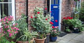 Green Front Gardens Minskar fysiologisk och psykologisk stress