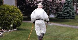 您可以采取什么措施来保护孩子免受农药侵害