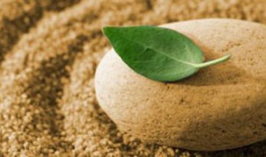 25 Minit Bertafakur untuk Tiga Hari Berturut-turut Meringankan Stress