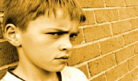 基因可能指向憤怒,侵略和控制的方式