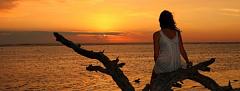 Determinar tu destino: cómo usar el Feng Shui para atraer el amor