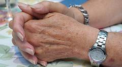 Envejecimiento y salud celular: ¿podemos influir para lograr una larga vida?