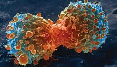 Las células cancerosas juegan sucio para obtener lo que quieren