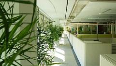 Ang ilang mga kagulat-gulat Mga Benepisyo Mula sa Green Buildings