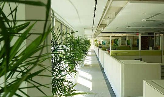녹색 건물에서 몇 가지 놀라운 혜택