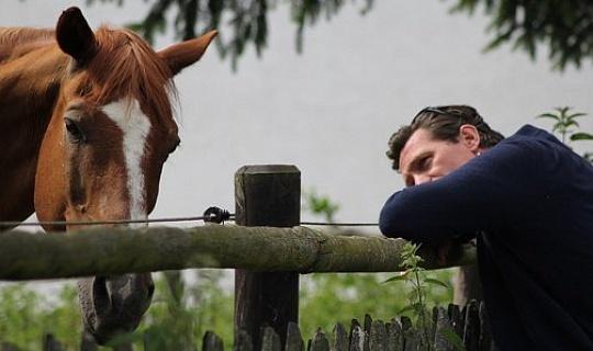 Equine Encounters: Mendengar Whisper Whisper