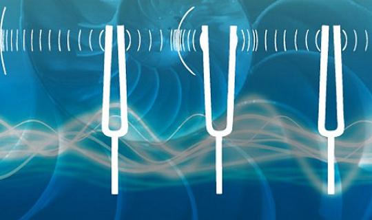 Com'è stato il bilanciamento del suono: il mio viaggio alla scoperta del biocampo