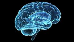 ¿La esquizofrenia está escrita en nuestros genes?