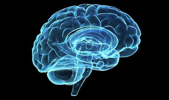 정신 분열증은 우리의 유전자에 쓰여 있습니까?