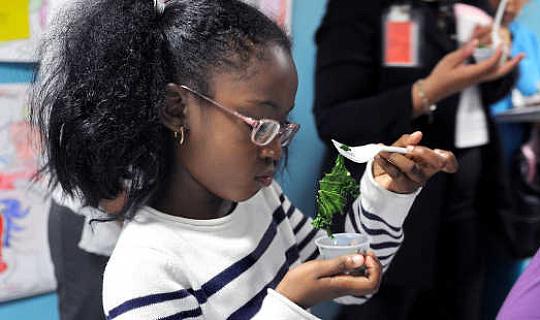 यदि बच्चे काला हो जाते हैं, तो क्या वे खाते हैं? अमेरिकी कृषि विभाग, सीसी द्वारा