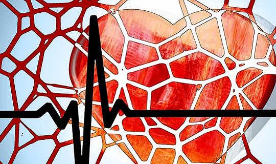 क्या हमारी प्रतिरक्षा प्रणाली सचमुच हृदय रोग का कारण बन सकती है?