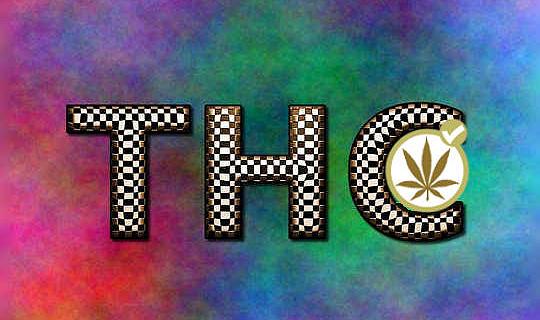 Den eigenen Cannabis im Kampf gegen Krebs nutzen