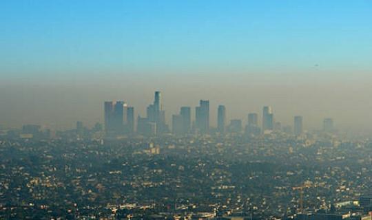 पर्यावरण को आत्मकेंद्रित के साथ क्या करना है?