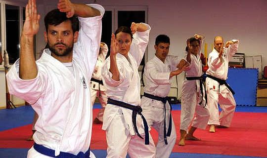 मार्शल आर्ट्स आपकी दीर्घकालिक ध्यान अवधि और सतर्कता में सुधार कर सकते हैं