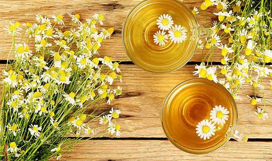 Chá de camomila pode ajudar a controlar o diabetes