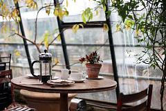 क्या कॉफी पीने से आप लंबे समय तक जीवित रह सकते हैं?