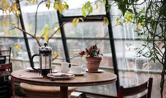 Hjälper du att dricka kaffe hjälper dig att leva längre?
