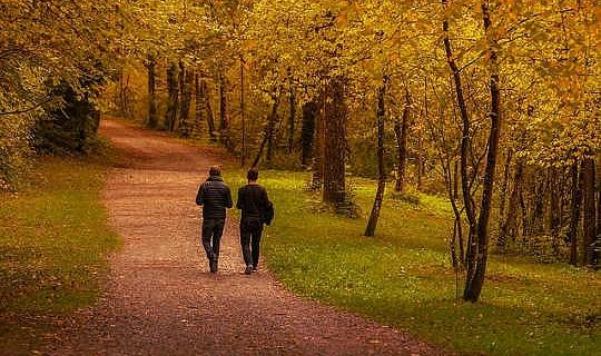 왜 우즈에서의 산책은 정말로 당신의 몸과 당신의 영혼을 돕는가?