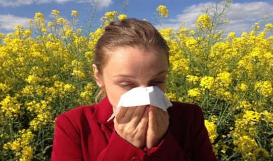 Wat is allergieë en waarom kry ons meer van hulle?