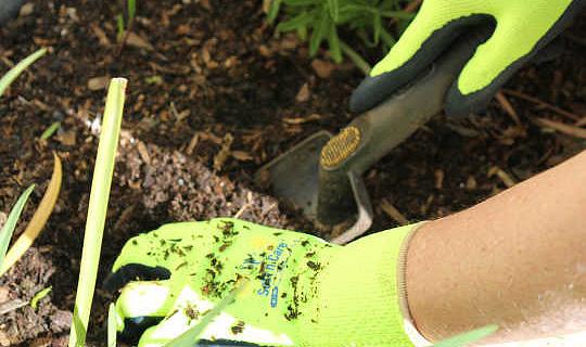 5 redes waarom jy tuinhandskoene moet dra