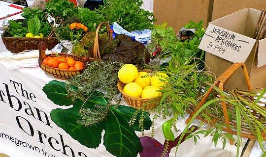 讓我們在大農業中獲取當地食品的經濟效益