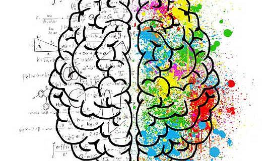 آٹزم کی انتہائی مردانہ دماغی تھیوری کی تصدیق ہوگئی۔