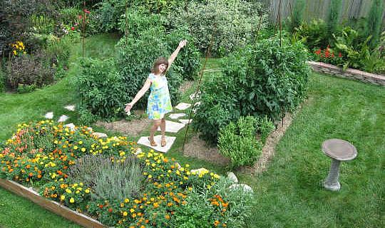 Enkla steg för att odla en revolution i din bakgård