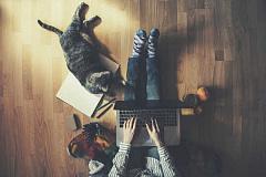 Les inconvénients surprenants du travail à domicile