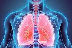Comment vos poumons sont vraiment étonnants