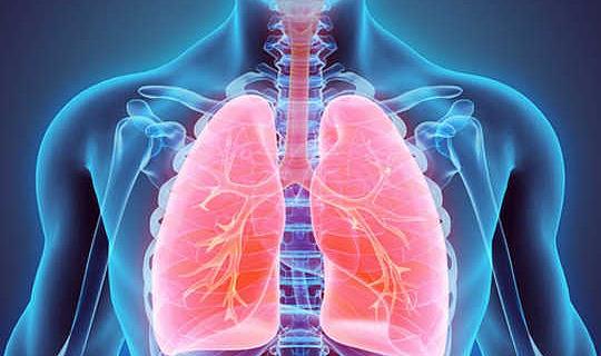 Cómo tus pulmones son realmente asombrosos