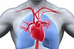 ¿Por qué 90% de las directrices sobre el corazón no se basan en la mejor evidencia?