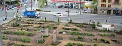 Crecimiento de la Comunidad con jardines comunitarios por Peter Ladner