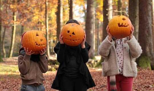 Halloween-lekkergoed hoef nie eng vir u tande te wees nie