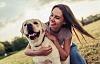 Cães realmente podem afugentar a solidão