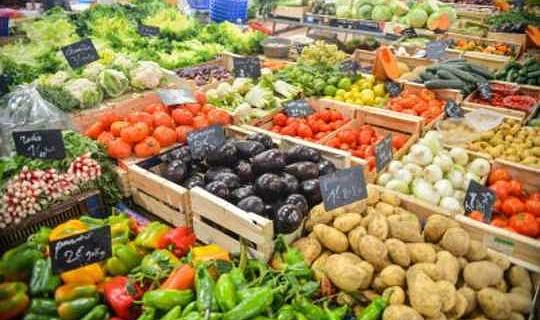 ईयू जीएम फसलों पर सख्त है, लेकिन क्या यह तार्किक है?
