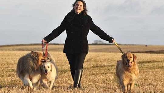 Pourquoi la Grande-Bretagne est une nation d'amoureux des animaux de compagnie
