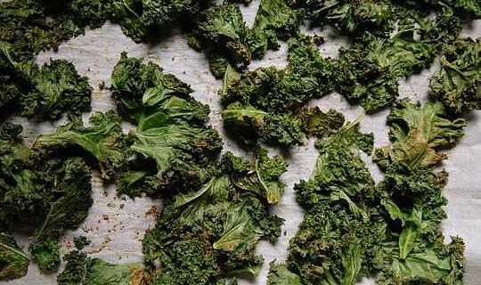 菜青菜無頭甘藍和海藻曾經被認為是不得已的食物