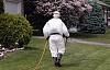 O que você pode fazer para manter seus filhos a salvo de pesticidas