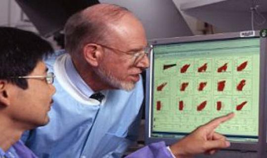 Classificação de endometrial Tumores poderia orientar o tratamento
