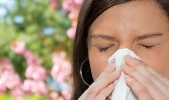 Hur man kontrollerar dina säsongsallergier