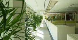 Certains avantages surprenants de bâtiments verts