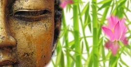 meditasie vir beginners