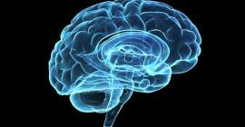 精神分裂症是寫在我們的基因?