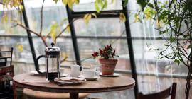 마시는 커피가 더 오래 살 수 있습니까?