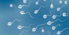 Coronavirus gevind in Semen van jong mans
